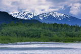 Mendenhall Glacier Lake  Juneau  Alaska  United States of America  North America