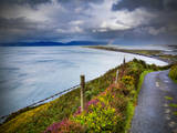 A Country Road Down to Rossbeigh in County Kerry