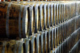 Oak Casks Wait for the Grape Juice after the Vintage of Port Wine-Grapes