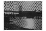 New York City Bridges 2