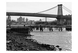 New York City Bridges 1