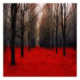 Fiery Autumn Reproduction d'art par Tracey Telik
