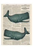 Sperm Whale Reproduction d'art par Tina Carlson
