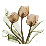 Tulipes Reproduction d'art par Albert Koetsier