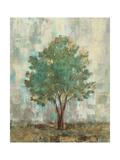 Verdi Trees II Giclée premium par Silvia Vassileva