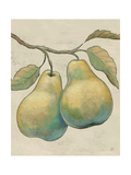 Lovely Fruits I Neutral Plain