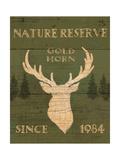 Lodge Signs IX Green