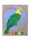 Parrot (from the American Dream Portfolio)