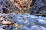 The Narrows of the Virgin River in autumn in Zion NP  Utah  USA