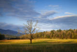 USA  Tennessee  Pasture in Cades Cove