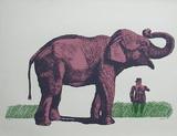 Elefante y General