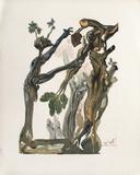 Divine Comedie  Enfer 13: La Forêt Des Suicidés