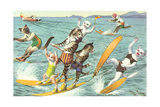 Crazy Cats Waterskiing