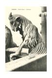 Goat Gargoyle  Notre Dame