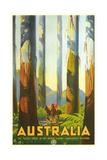 Australia Travel Poster  Trees