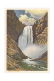 Lower Falls  Yellowstone River