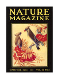 Nature Magazine Cover  Birds