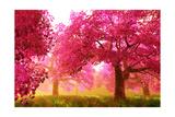 Mysterious Japanese Cherry Blossom Tree Sakura Render Reproduction d'art par Boscorelli