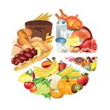 Food Pie Chart Illustration