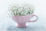 Pink Cup with White Flowers