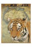 Tiger Africa
