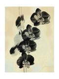 Orchid Blush Panels III