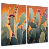 Cactus Orange 2 piece gallery-wrapped canvas