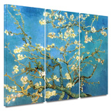 Almond Blossom 3 piece gallery-wrapped canvas