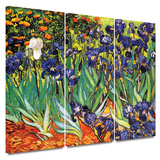 Irises in the Garden 3 piece gallery-wrapped canvas