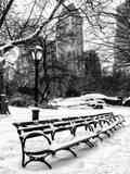A Bench and Lamppost Snow in Central Park