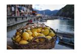 Vernazza Still Life  Cinque Terre  Italy