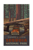 Tunnel Log- Sequoia National Park Pal 1233