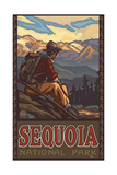 Mountain Hiker in Sequoia National Park Pal 794
