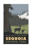 Crescent Meadow- Sequoia National Park Pal 1235