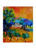 Provence 674110