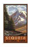 Sequoia National Park Mountain Springtime Pal 1214