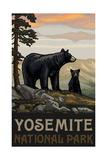 Yosemite National Park BBF Black Bears