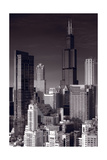 Chicago Loop Towers BW