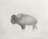 Buffalo (right) Reproduction d'art par Jacqueline Neuwirth