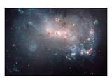 NASA - NGC 4449 Stellar Fireworks