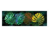 Tropical Triptych Monstera Reproduction d'art par Melinda Bradshaw