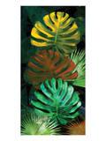 Tropical Monstera Reproduction d'art par Melinda Bradshaw