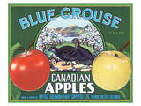 Blue Grouse Canadian Apples