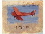Vintage Plane VI