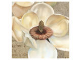 Magnolia Masterpiece I