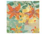 Tiger Lilies Summer