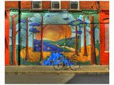 Wall Painting with Bike