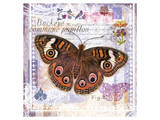 Butterfly Artifact Lilac
