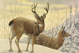 A Painting of Two Black-Tailed Deer Standing in the Snow