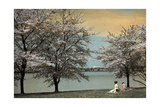 Two Women Sit by a Waterfront Framed by Cherry Blossoms